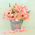 Tulip flower beauty pink and cream arrangement in an old metal pot with ribbon over mottled green background Royalty Free Stock Photo