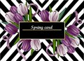 Tulip flowers card Vector realistic. Abstract modern background, stripes black and white Royalty Free Stock Photo