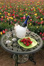 Tulip flowers, champagne and strawberries outdoors Stock Photos