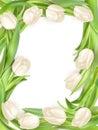 Tulip Frame. EPS 10
