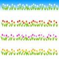Tulip Line / divider