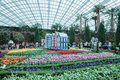 Tulip mania gardens by the bay tulipmania at flower dome singapore Stock Image