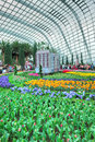 Tulip mania gardens by the bay tulipmania at flower dome singapore Stock Photos