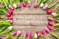 Tulips arranged on old wooden background frame of fresh Royalty Free Stock Photo