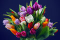 Tulips bouquet Royalty Free Stock Photo