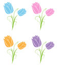 Tulips a bright colorful set of tulip flowers Royalty Free Stock Photography