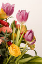 Tulips, Carnations & Roses Stock Images
