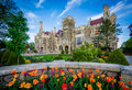 Tulips and Casa Loma in Midtown Toronto, Ontario. Royalty Free Stock Photo