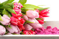 Tulips and decoration stones on wooden tray Royalty Free Stock Image