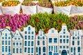 Tulips in a flower shop with souvenir Amsterdam canal houses in Royalty Free Stock Photo