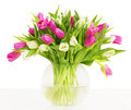 Tulips flowers bouquet in vase, white background Royalty Free Stock Photo