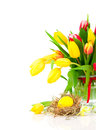 Tulips flowers with easter egg on a white background Royalty Free Stock Image
