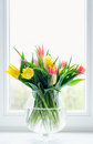 Tulips in glass vase Royalty Free Stock Photo