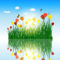 Tulips in grass with reflection in water eps vector illustration transparency and meshes Stock Photography