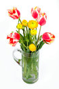 Tulips And Peonies Stock Images