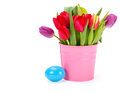 Tulips in pink bucket and blue easter egg copy space on left Stock Photography