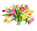 Tulips sketch Royalty Free Stock Photo