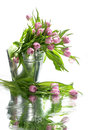 Tulips in small bucket with reflection bouquet of pink water Stock Photo