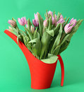 Tulips in Watercan Royalty Free Stock Photos
