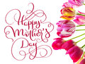 Tulips on a white background and text Happy mothers day. Calligraphy lettering hand draw