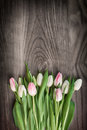 Tulips On Wood