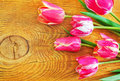 Tulips on the wooden background Stock Images