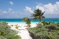 Tulum beach mexico the of quintana roo Royalty Free Stock Image