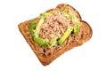 Tuna and avocado melt on toast isolated white background Royalty Free Stock Images