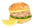 Tuna And Cucumber Sandwich Roll Royalty Free Stock Photo