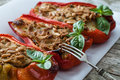 Tuna Fish Stuffed Peppers Royalty Free Stock Photo