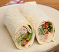 Tuna fish wrap sandwich and salad Royalty Free Stock Photos