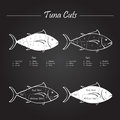 Tuna meat cuts scheme set of diagram in vector style white on blackboard Royalty Free Stock Images
