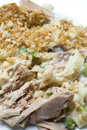 Tuna noodle casserole Royalty Free Stock Photography