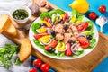 Tuna salad with anchovies, eggs, black olives, tomatoes, oil, basil, garlic, vinegar Royalty Free Stock Photo