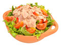 Tuna Salad Bowl Royalty Free Stock Photo