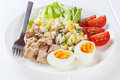 Tuna salad with egg a small meal of calories or kilojoules consisting of half a can of a boiled and two teasooons of mayonnaise Stock Image