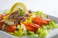 Tuna salad elegant look with mixed vegetables Stock Image