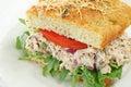 Tuna Salad Sandwich Royalty Free Stock Photo