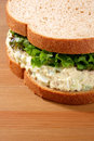 Tuna salad sandwich Royalty Free Stock Photo