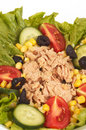 Tuna salads Royalty Free Stock Photo