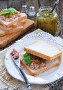 Tuna sandwich with cucumber sweet relish dinner Stock Photos