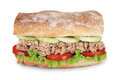 Tuna sandwich fresh with lettuce cucumber and tomato Royalty Free Stock Photography