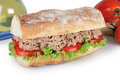 Tuna sandwich fresh with lettuce and tomato Royalty Free Stock Photo