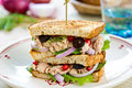 Tuna sandwich olive pomegranate Royalty Free Stock Photos