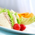 Tuna sandwich with salad Royalty Free Stock Photo