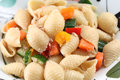 Tuna shell pasta close up of in plate Royalty Free Stock Photo