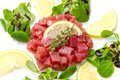 Tuna tartare Royalty Free Stock Photos