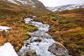 Tundra biome in Norway Royalty Free Stock Photo