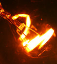 Tungsten bulb close up of Royalty Free Stock Images