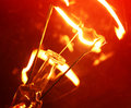 Tungsten bulb close up of Royalty Free Stock Photo